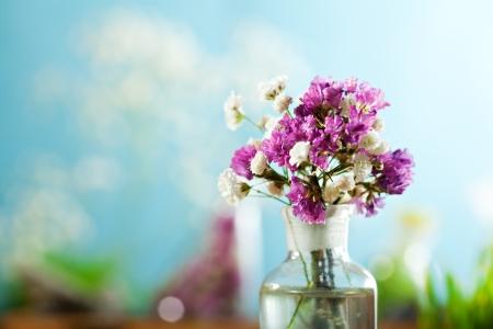 petites fleurs: Bunch petite fleur Banque d'images
