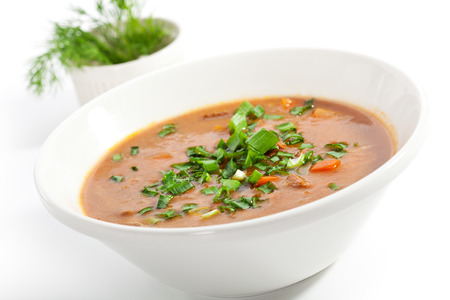 hot soup: Meat Sour Soup with Sour Cream Stock Photo