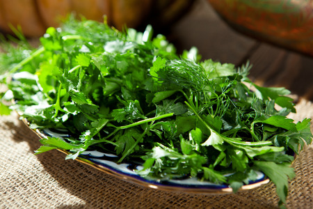 Spring Garden Fresh Green Herbs DIsh Stok Fotoğraf