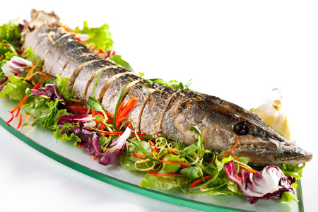 Stuffed Sliced Pike with Mixed Salad Stock Photo