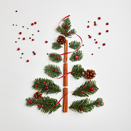 Christmas Tree made of Winter Foliage and Cinnamon Sticks. Holiday Concept. Flat Lay 写真素材