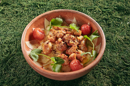 Beautiful Serving Vintage Ceramic Bowl of Azeri Guru Hinkal Pasta with Chicken and Tomatoes on Natural Moss and Wood Background. Homemade Asian Spicy Lasagne or Flat Noodles with Lamb Close Up Standard-Bild - 115864751