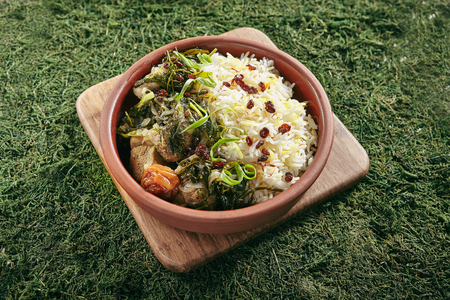 Beautiful Serving Vintage Ceramic Bowl of Roast Meat with Rice and Herbs Close Up. Homemade Grilled Beef, Lamb Fillet with Onions, Raisins, Dried Fruits and Greens on Natural Moss and Wood Standard-Bild - 115864786