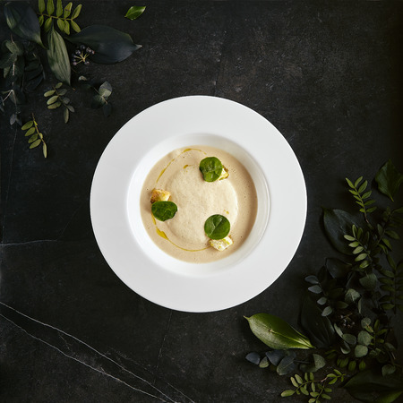 Exquisite Serving White Restaurant Plate of Cream Cappuccino Soup with Porcini Mushrooms and Truffle Top View. Reklamní fotografie