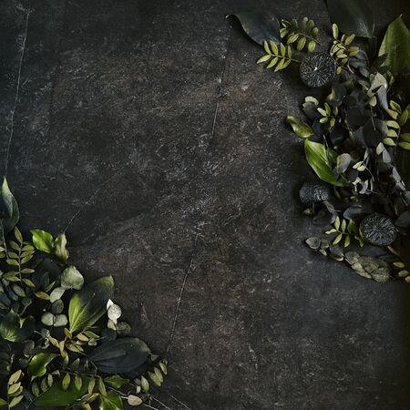 Dark green tropical leaves mockup on natural black stone background with copy space top view. Leave frame made of exotic jungle foliage and flowers in trendy terrarium moss color