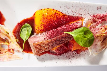 Duck breast with roasted plum dish top view. Baked meat slices and glazed rheum isolated on white background. Roasted food. Gourmet meal garnished with herbs leaves on plate composition