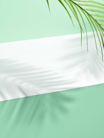 Abstract background of shadows palm leafs on green wall and white floor. Creative summer minimal mock-up. Copy space, green and white background. Summer tropical leaf. Minimal spring concept.