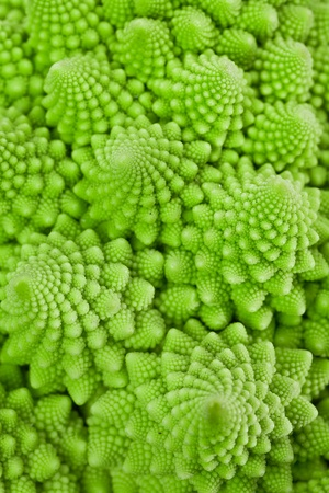 Macro photo of fresh green cabbage Romanesco