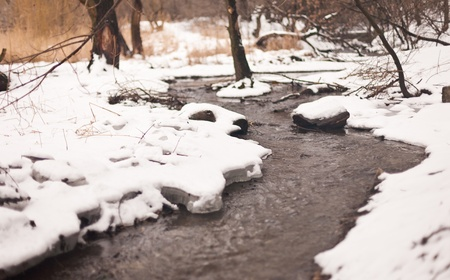 winter creek in the park. shallow depth of field photo
