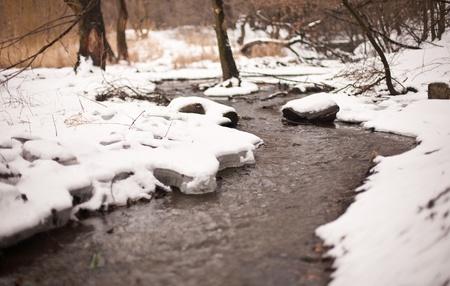 strumień: creek zima w parku. pÅ'ytkiej gÅ'Ä™bi ostroÅ›ci