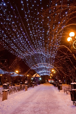 Scenic view of decorated winter city park at night Stock Photo - 12002381