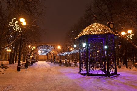Scenic view of decorated winter city park at night photo