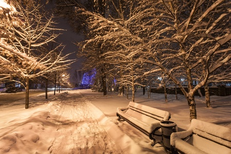 Winter park in the evening covered with snow with a row of lamps photo
