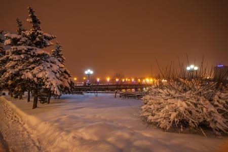 River promenade in Donetsk city on a winter Christmas night  Ukraine Stock Photo - 16945891