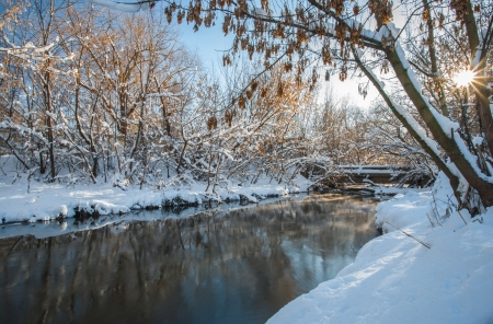 winter river and trees in winter season. Beautiful winter landscape