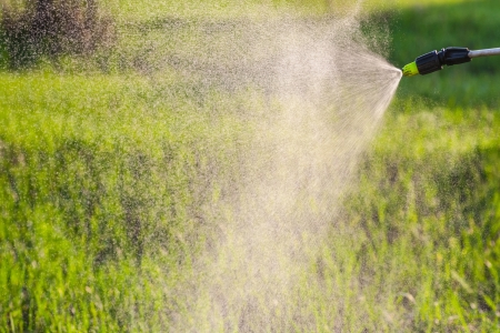 watering the lawn with a hand sprayer photo