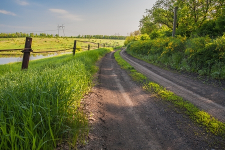 A country road passing trough green spring meadows photo