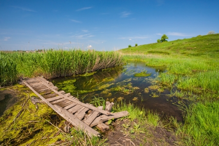 A small wooden bridge over a creek. Grass, blue sky, reeds photo