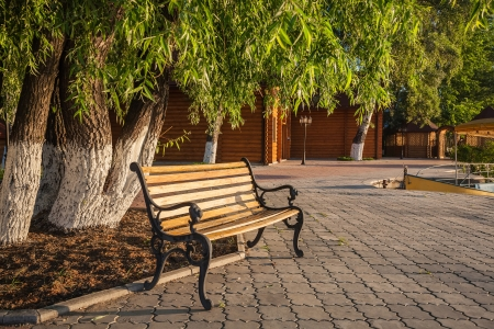 wooden park bench at a summer park photo