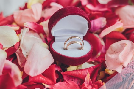 image of wedding rings in a gift box on flowers background photo