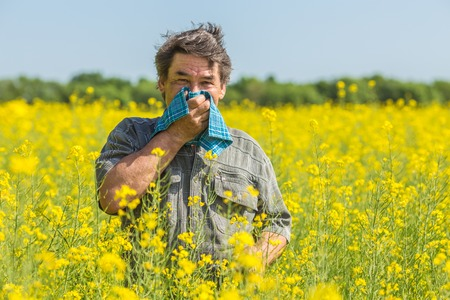 man in field blowing his nose and suffering from hay fever. 版權商用圖片