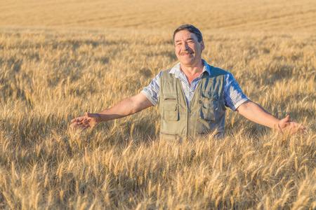 wheatfield: farmer standing in a wheat field
