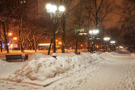decorated winter city park photo