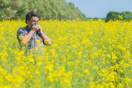 man in field blowing his nose and suffering from hay fever. Standard-Bild