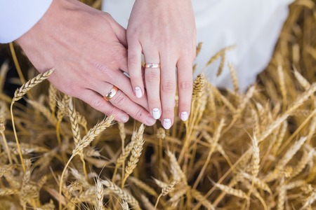 wed: Newly wed couples hands with wedding rings Stock Photo