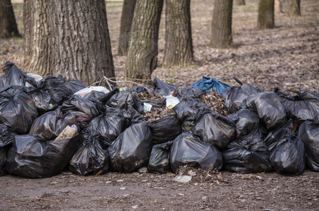 black plastic garbage bag: Last year leaves and garbage in the bags Stock Photo