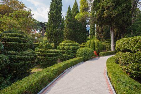 Beautiful garden with hedges. Pushkin Park, Gruzuf Crimea, Ukraine Standard-Bild
