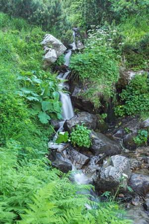 nice beautiful mountain stream with green stones