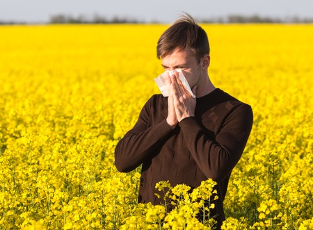 handkerchief: Young man in yellow canola field blowing his nose and suffering from pollen allergy.