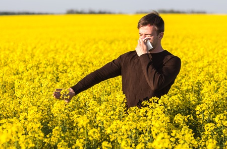 Young man in yellow canola field blowing his nose and suffering from pollen allergy.