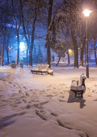 winter park: Winter night landscape- bench under winter trees and shining street lights under winter falling snowflakes. Colorful night scene with falling snow in the deserted night park