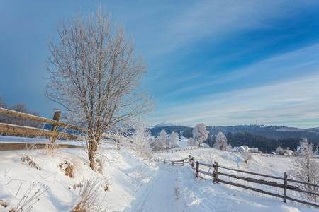 Winter landscape. Winter road and trees covered with snow Stock Photo