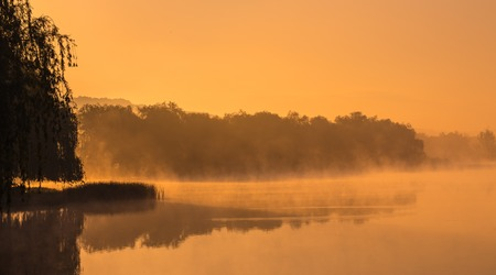 Autumn fog in the morning on the river