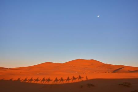 Silhouet van kameelcaravan in grote zandduinen van de woestijn van de Sahara, Erg Chebbi, Merzouga, Marokko Stockfoto