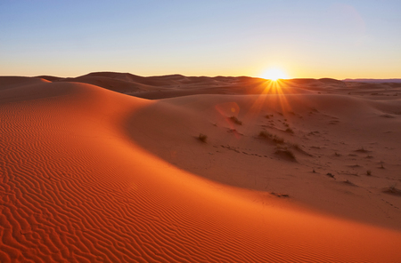 Beautiful sand dunes in the Sahara desert