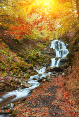 beautiful waterfall in forest, juicy autumn landscape