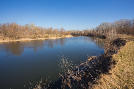 landscape river and spring forest. Nature composition.