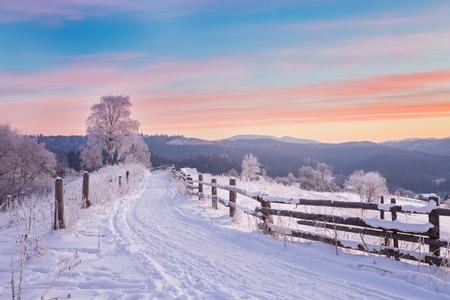 겨울 울타리와 눈 덮인도 겨울 나라 풍경 상록 숲
