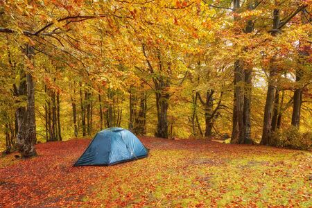 Tourist camp in the autumn forest with red and yellow foliage. Autumn landscape with a tourist tent.