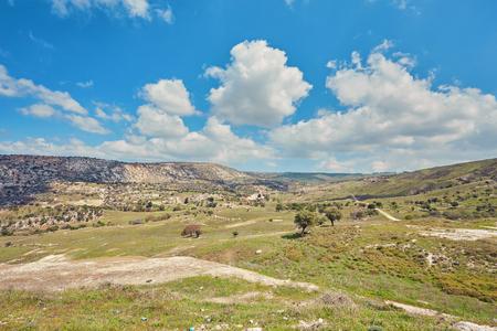 Sunny vanishing footpath among sunny growth on Avakas Gorge slopes. Akamas peninsula, Cyprus.