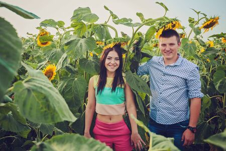 young girl and a young man in a field of sunflowers Standard-Bild - 146937412