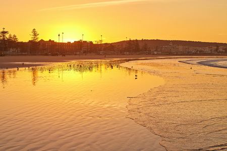 Romantic sunset on the beach with seagulls, water reflections and windmills on background in Essaouira, Morocco with shallow depth of field