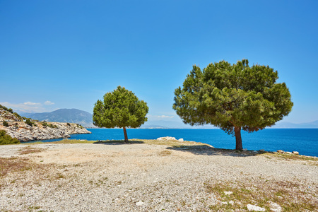 Sea beach in Turkey. Beautiful summer landscape