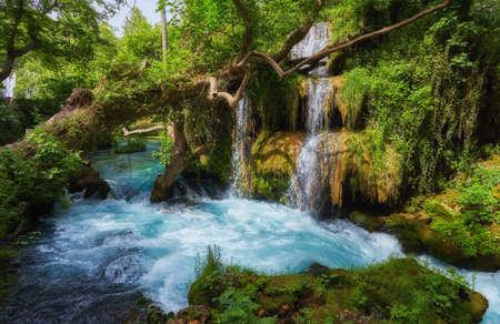 beautiful limestone waterfall forest with soft water