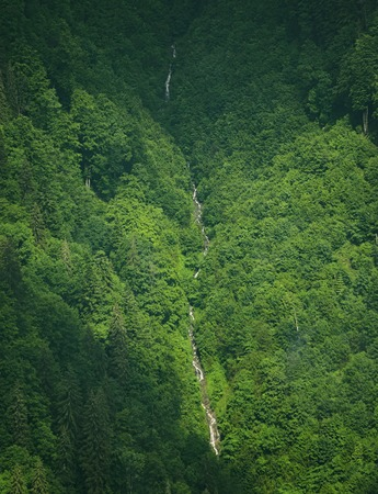 High narrow waterfall taken from afar, with on both sides trees