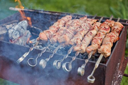 meat on skewers is roasted on a fire in nature Reklamní fotografie
